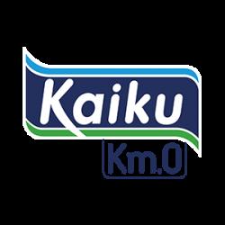 kaiku web centenario